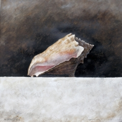 Conch Shell - 20 x 20 inches - Watercolour